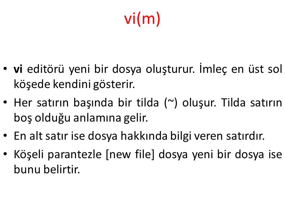 vi(m) vi editörü yeni bir dosya oluşturur.İmleç en üst sol köşede kendini gösterir.