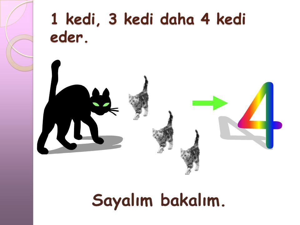 1 kedi, 3 kedi daha kaç kedi eder?