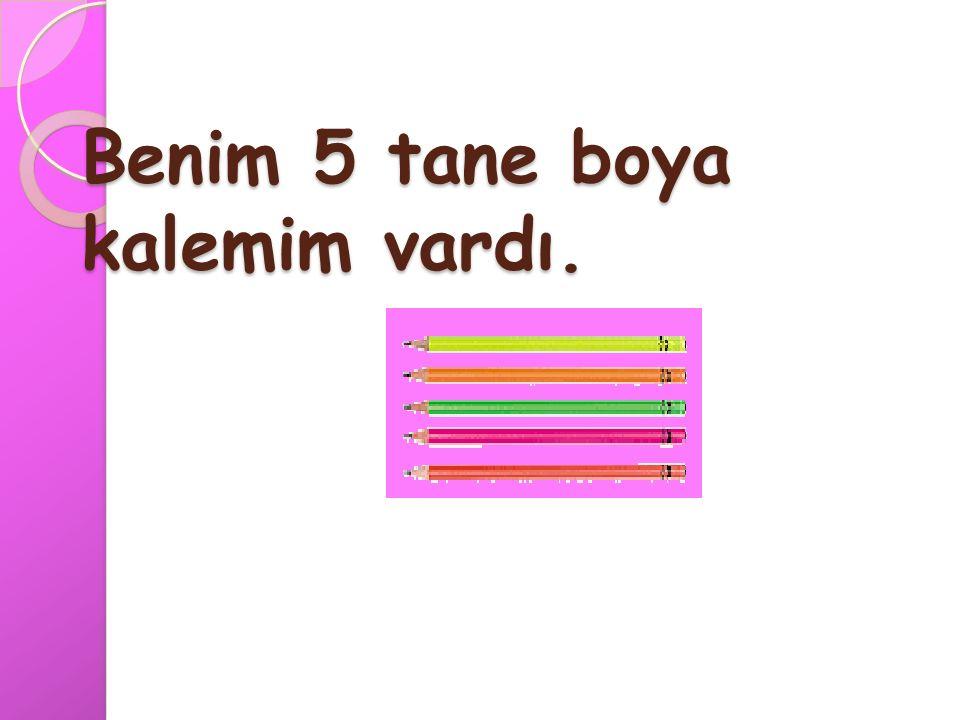 8 sekiz