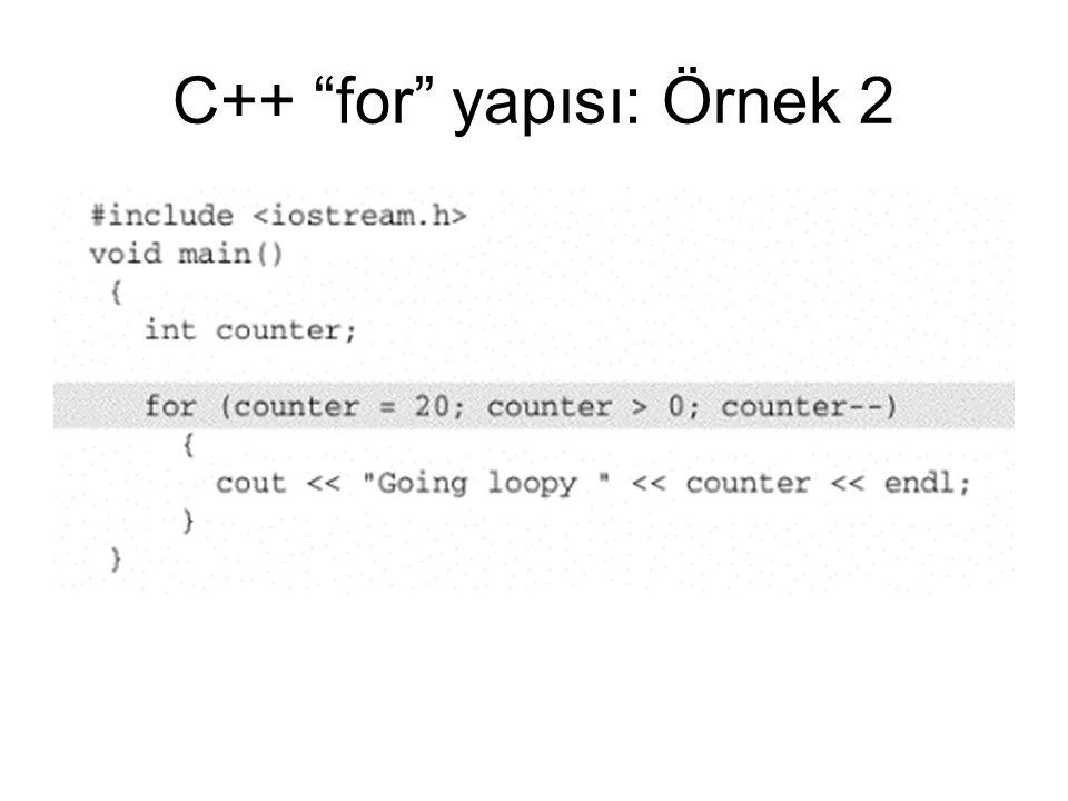 C++ for yapısı: Örnek 2