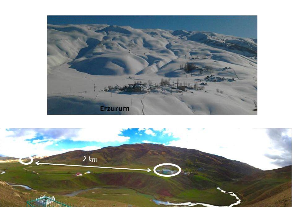 Erzurum 2 km