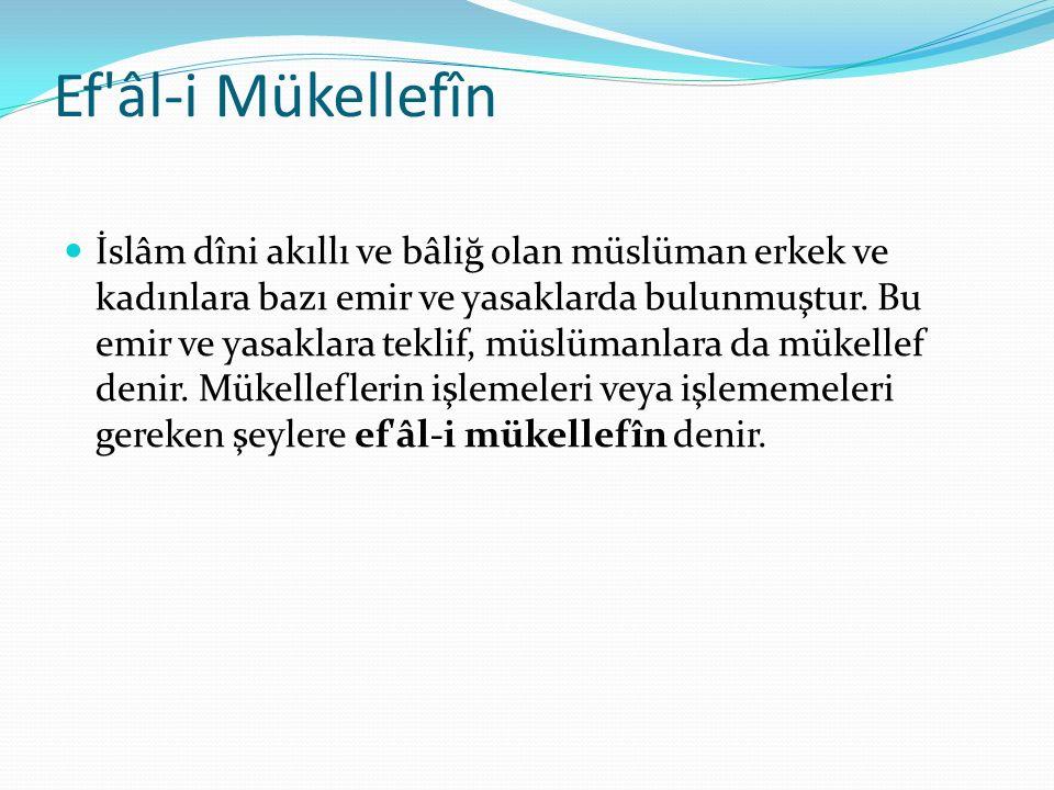 Ef'âl-i Mükellefîn İslâm dîni akıllı ve bâliğ olan müslüman erkek ve kadınlara bazı emir ve yasaklarda bulunmuştur. Bu emir ve yasaklara teklif, müslü