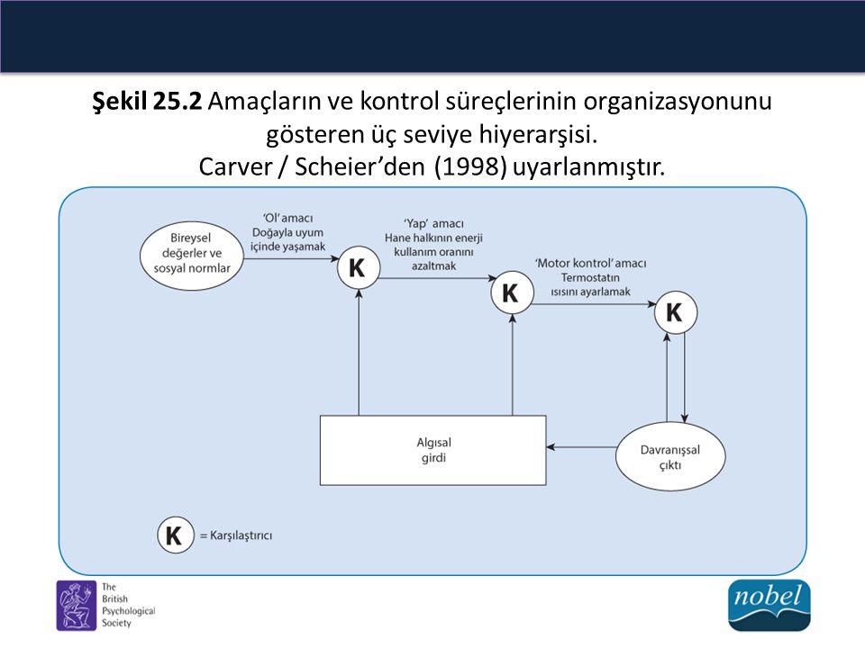Şekil 25.2 Amaçların ve kontrol süreçlerinin organizasyonunu gösteren üç seviye hiyerarşisi.