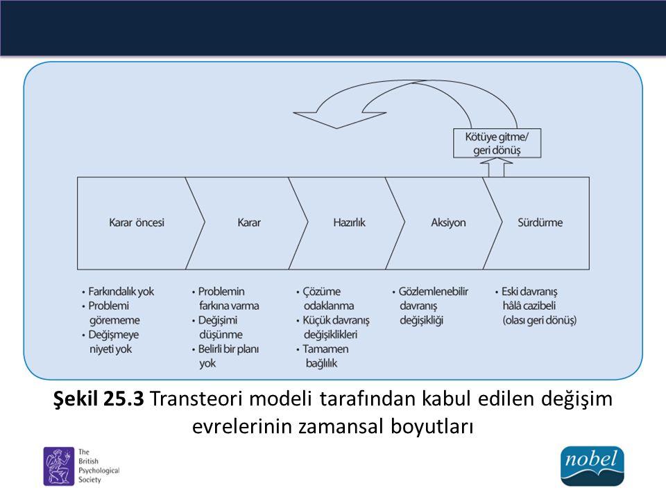 Şekil 25.3 Transteori modeli tarafından kabul edilen değişim evrelerinin zamansal boyutları