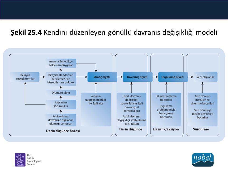 Şekil 25.4 Kendini düzenleyen gönüllü davranış değişikliği modeli
