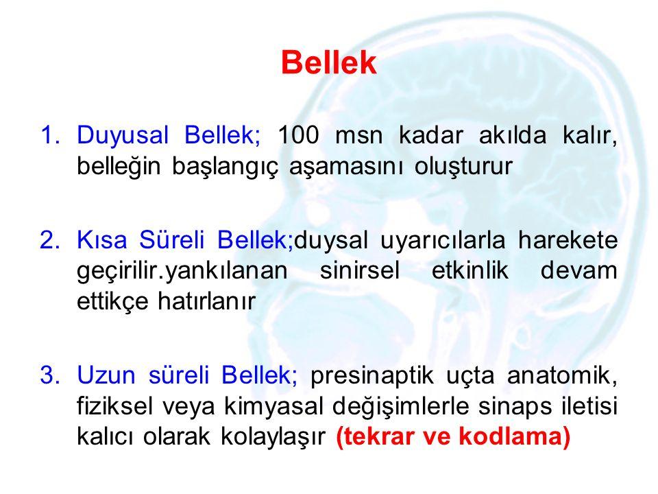 Bellek 1.Duyusal Bellek; 100 msn kadar akılda kalır, belleğin başlangıç aşamasını oluşturur 2.Kısa Süreli Bellek;duysal uyarıcılarla harekete geçirili
