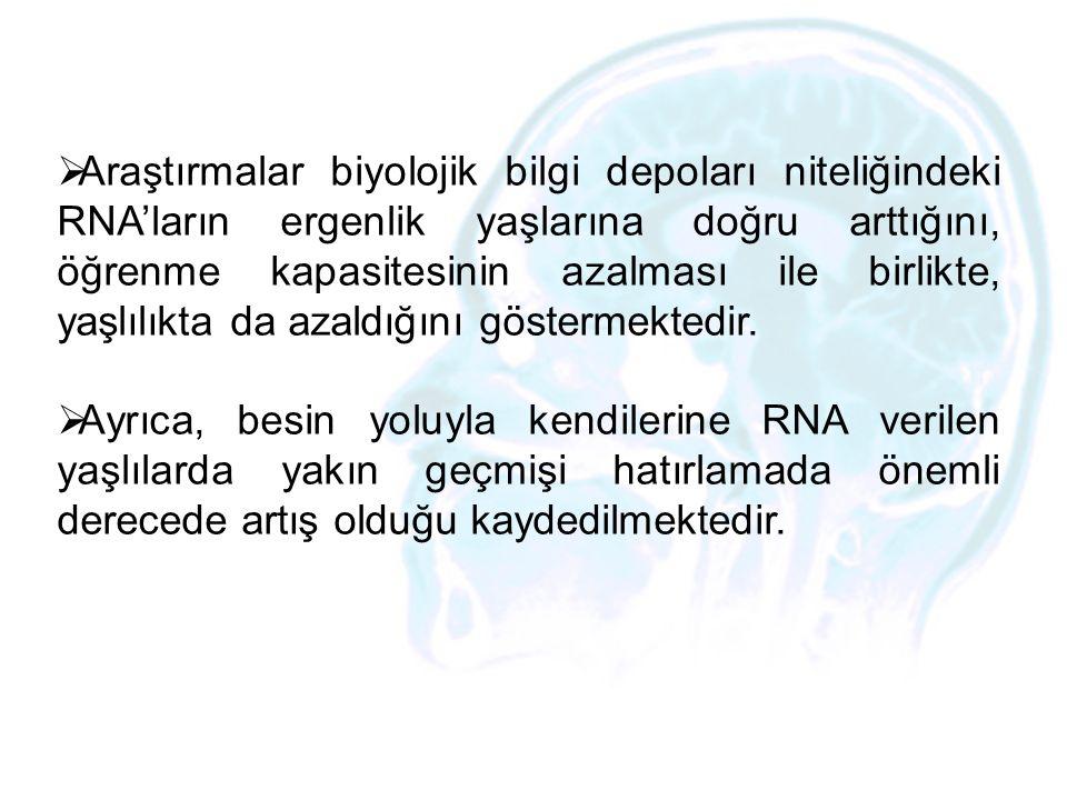  Araştırmalar biyolojik bilgi depoları niteliğindeki RNA'ların ergenlik yaşlarına doğru arttığını, öğrenme kapasitesinin azalması ile birlikte, yaşlı