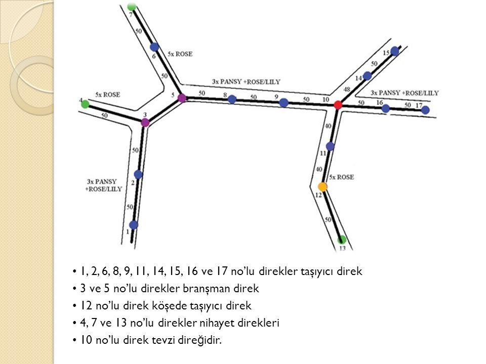 1, 2, 6, 8, 9, 11, 14, 15, 16 ve 17 no'lu direkler taşıyıcı direk 3 ve 5 no'lu direkler branşman direk 12 no'lu direk köşede taşıyıcı direk 4, 7 ve 13