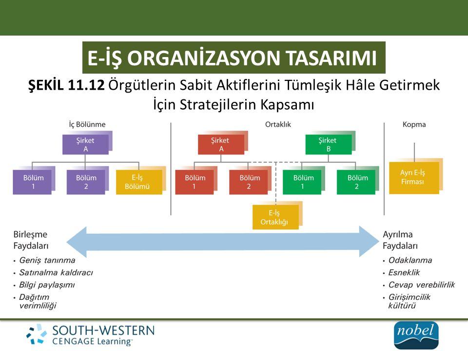 E-İŞ ORGANİZASYON TASARIMI ŞEKİL 11.12 Örgütlerin Sabit Aktiflerini Tümleşik Hâle Getirmek İçin Stratejilerin Kapsamı