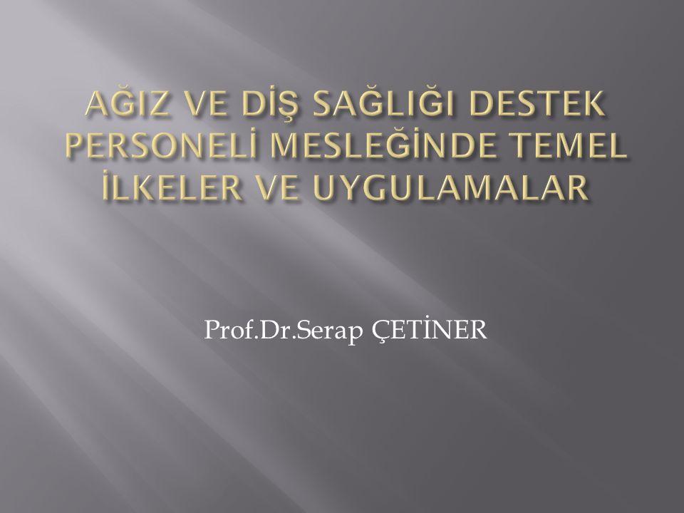 Prof.Dr.Serap ÇETİNER