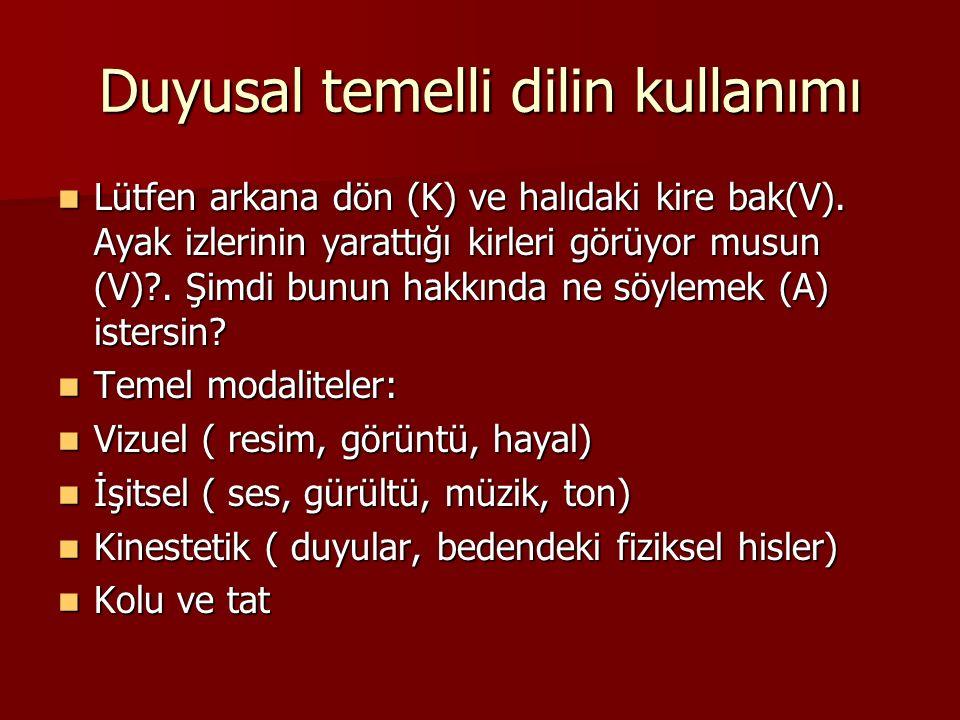 Duyusal temelli dilin kullanımı Lütfen arkana dön (K) ve halıdaki kire bak(V).