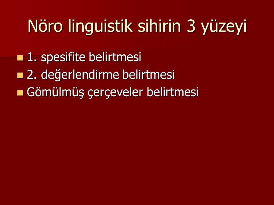 Nöro linguistik sihirin 3 yüzeyi 1. spesifite belirtmesi 1.