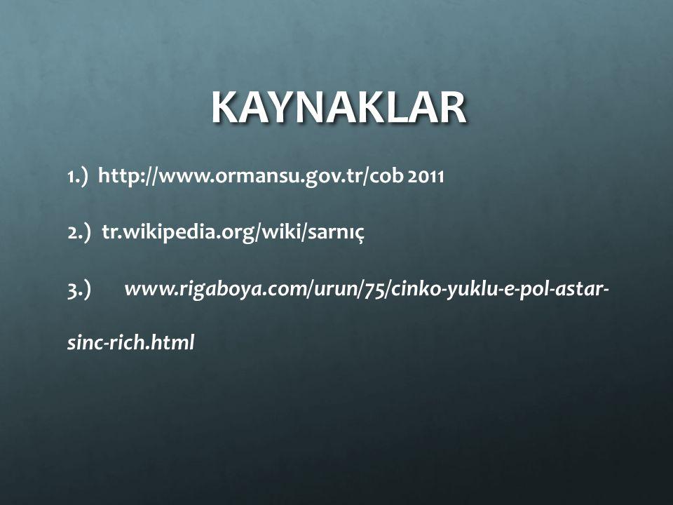 KAYNAKLAR 1.) http://www.ormansu.gov.tr/cob 2011 2.) tr.wikipedia.org/wiki/sarnıç 3.) www.rigaboya.com/urun/75/cinko-yuklu-e-pol-astar- sinc-rich.html