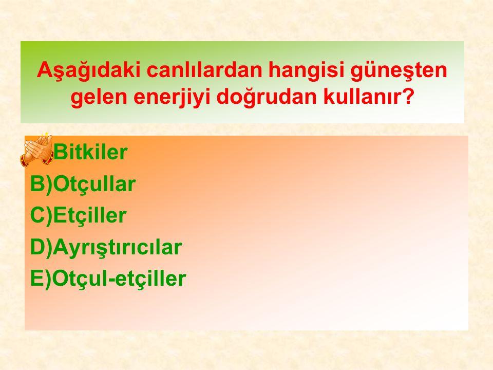 Aşağıdaki canlılardan hangisi güneşten gelen enerjiyi doğrudan kullanır? A)Bitkiler B)Otçullar C)Etçiller D)Ayrıştırıcılar E)Otçul-etçiller