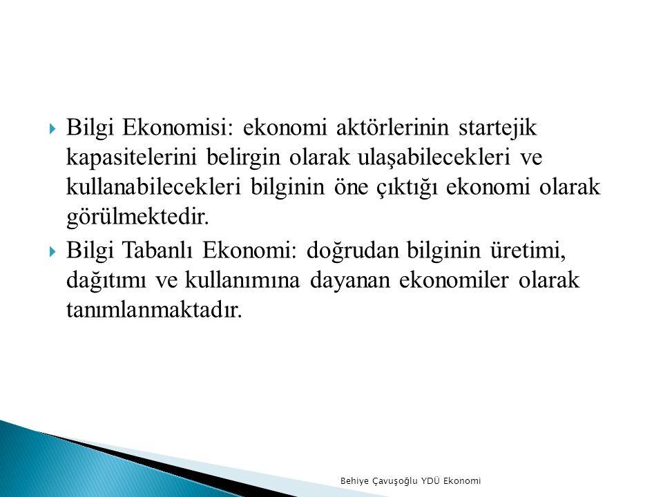 Literatürde bilgi ekonomisine yönelik farklı perspektifler içeren tanımlara erişebilmek mümkündür;  Entellektüel Sermaye  Bilgi Ekonomisi  Bilgiye Tabanlı Ekonomi  Bilgi Teknolojisi Devrimi  Dijital Ekonomi Behiye Çavuşoğlu YDÜ Ekonomi