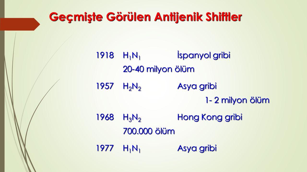 Geçmişte Görülen Antijenik Shiftler 1918 H 1 N 1 İspanyol gribi 20-40 milyon ölüm 1957H 2 N 2 Asya gribi 1- 2 milyon ölüm 1968 H 3 N 2 Hong Kong gribi 700.000 ölüm 1977H 1 N 1 Asya gribi H 3 N 2 ve H 1 N 1