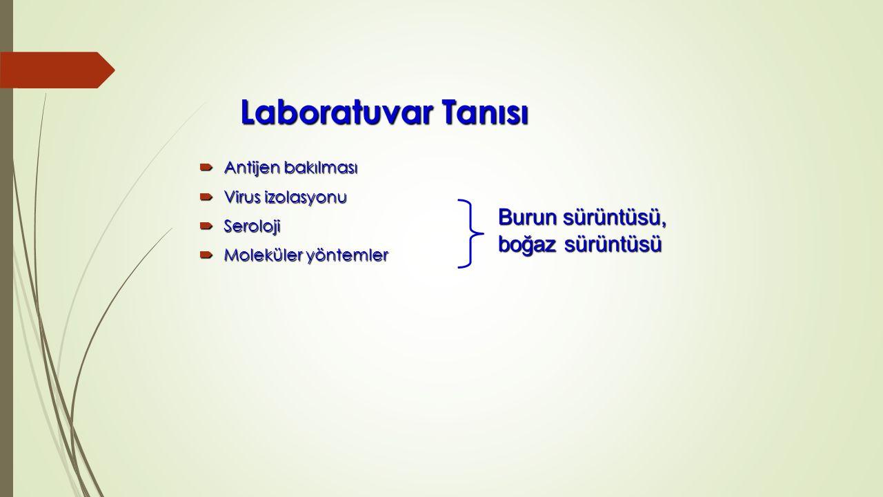 Laboratuvar Tanısı  Antijen bakılması  Virus izolasyonu  Seroloji  Moleküler yöntemler Burun sürüntüsü, boğaz sürüntüsü