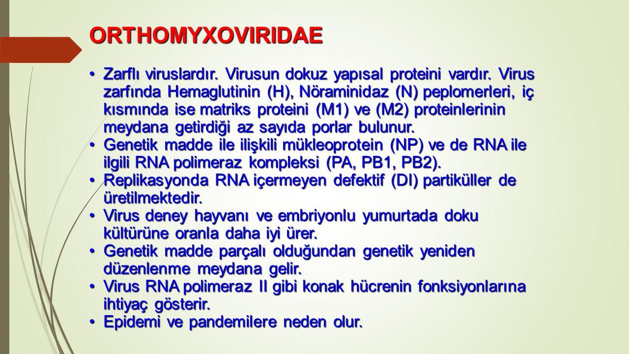 ORTHOMYXOVIRIDAE Zarflı viruslardır. Virusun dokuz yapısal proteini vardır. Virus zarfında Hemaglutinin (H), Nöraminidaz (N) peplomerleri, iç kısmında