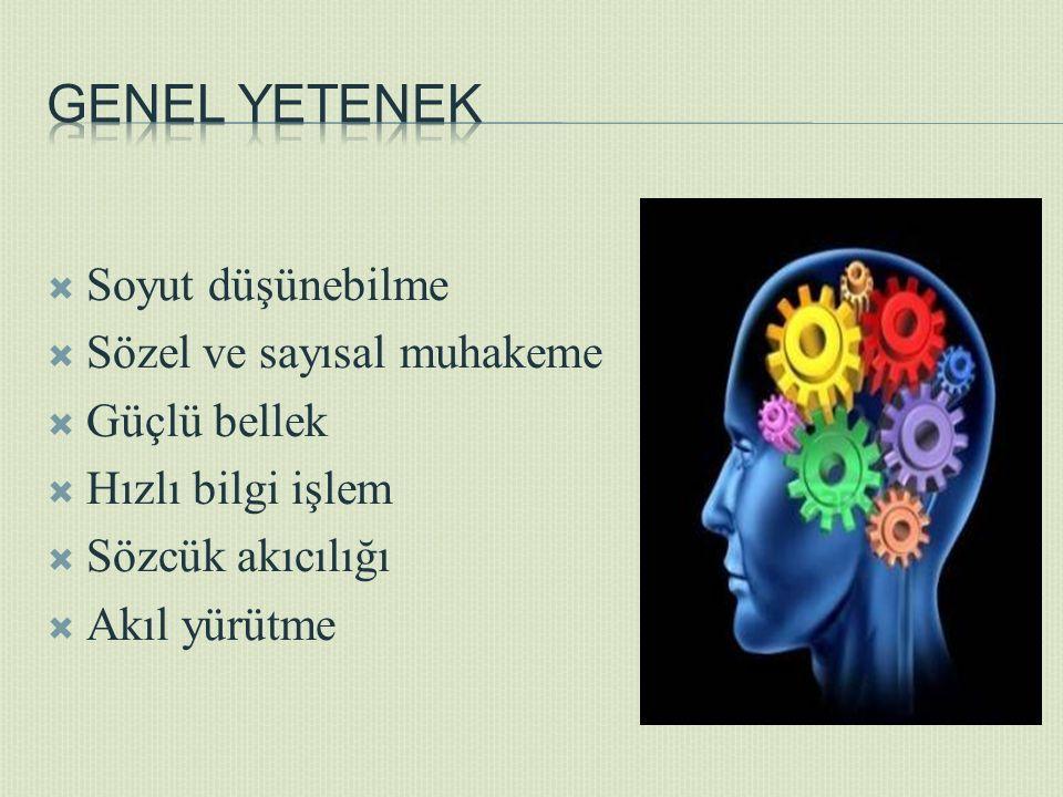  Soyut düşünebilme  Sözel ve sayısal muhakeme  Güçlü bellek  Hızlı bilgi işlem  Sözcük akıcılığı  Akıl yürütme