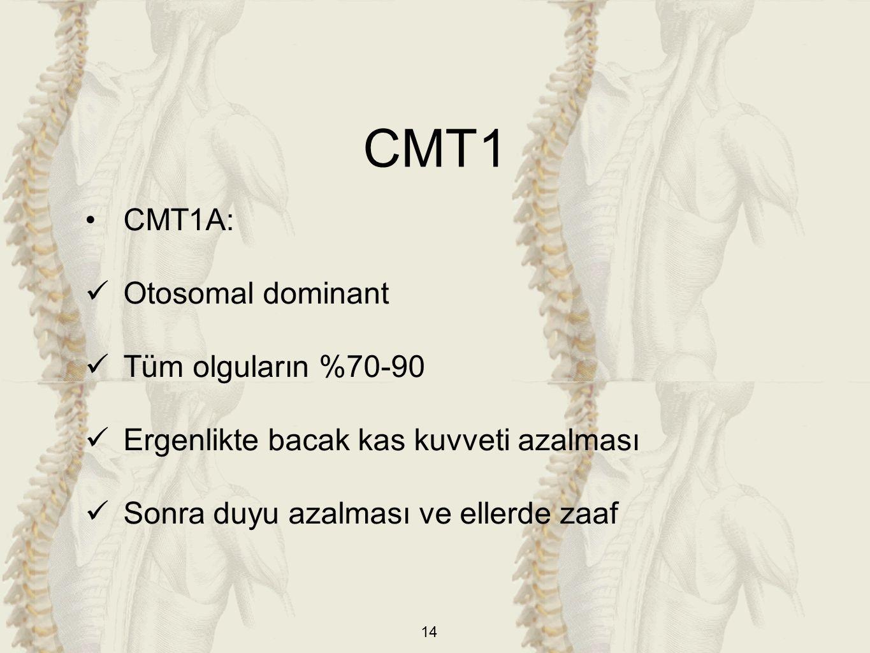 14 CMT1A: Otosomal dominant Tüm olguların %70-90 Ergenlikte bacak kas kuvveti azalması Sonra duyu azalması ve ellerde zaaf CMT1