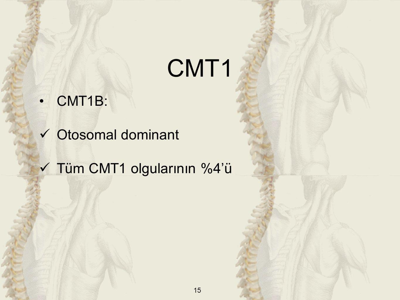 15 CMT1B: Otosomal dominant Tüm CMT1 olgularının %4'ü CMT1