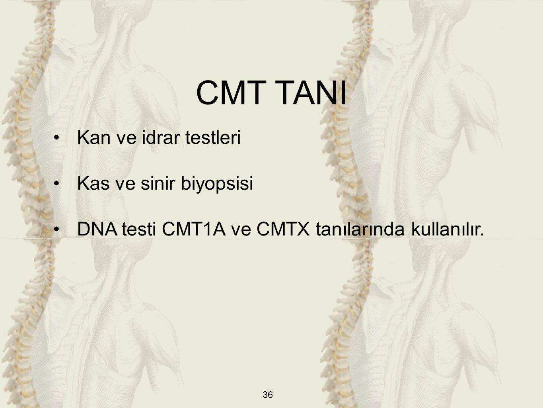 36 Kan ve idrar testleri Kas ve sinir biyopsisi DNA testi CMT1A ve CMTX tanılarında kullanılır.