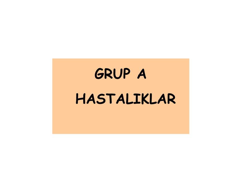 GRUP A HASTALIKLAR