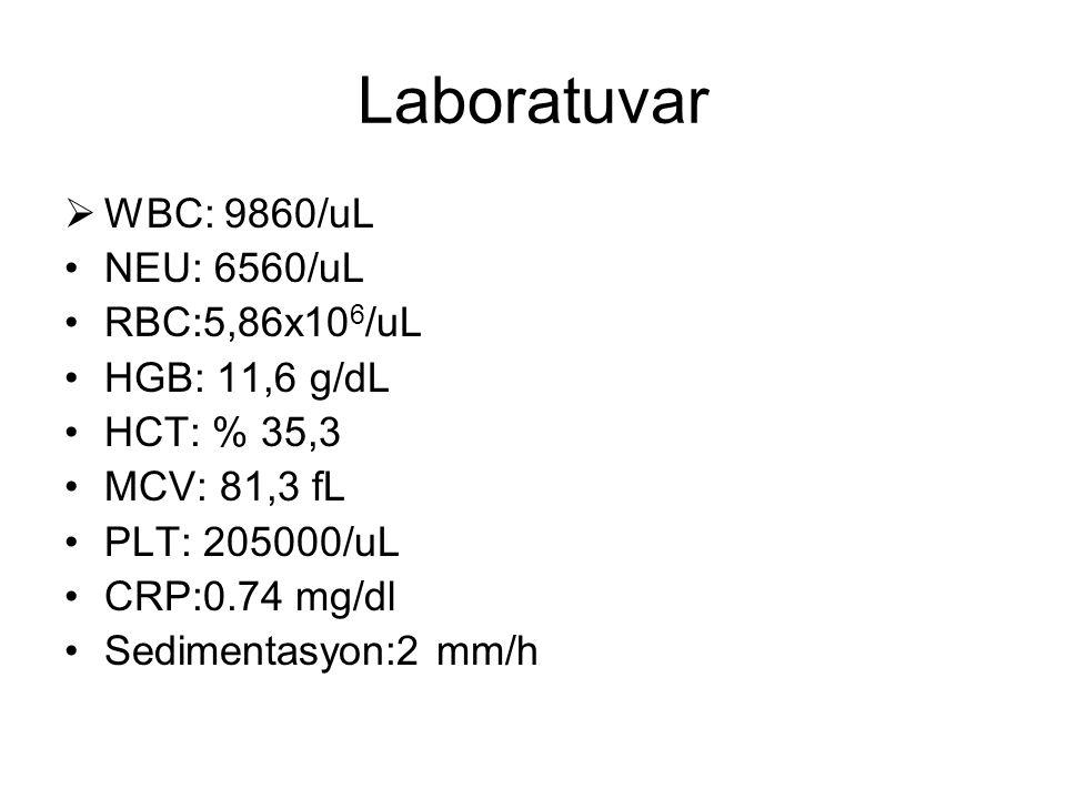 Laboratuvar  WBC: 9860/uL NEU: 6560/uL RBC:5,86x10 6 /uL HGB: 11,6 g/dL HCT: % 35,3 MCV: 81,3 fL PLT: 205000/uL CRP:0.74 mg/dl Sedimentasyon:2 mm/h
