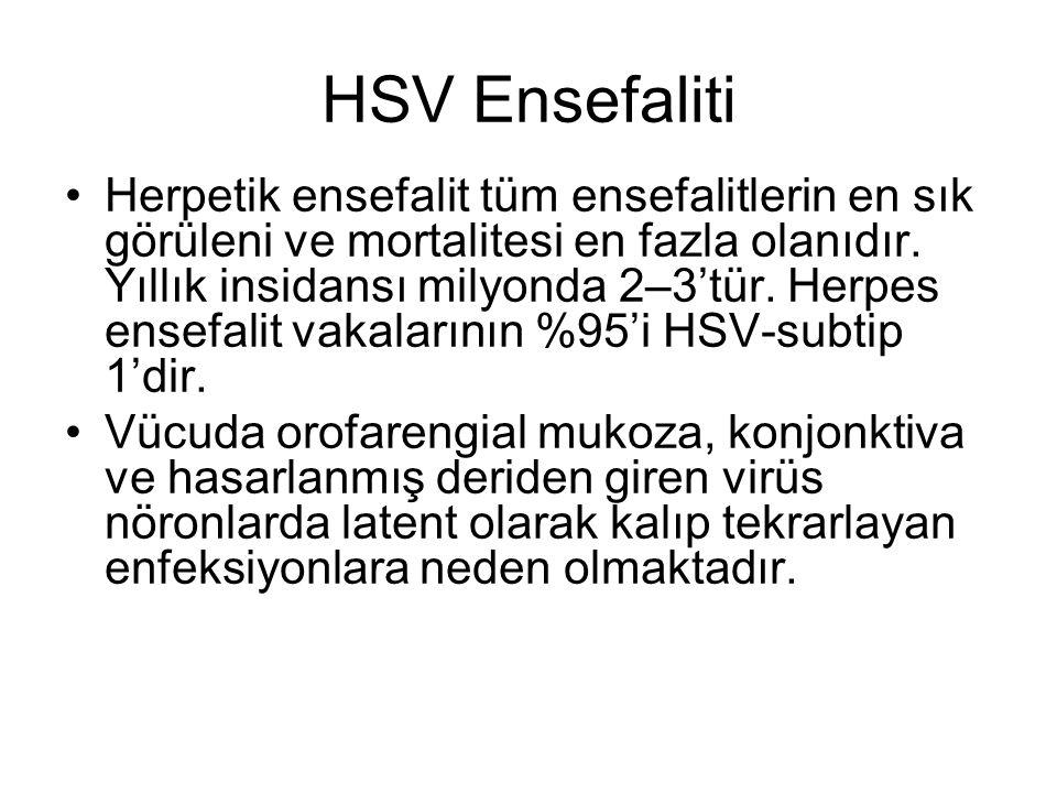 HSV Ensefaliti Herpetik ensefalit tüm ensefalitlerin en sık görüleni ve mortalitesi en fazla olanıdır.