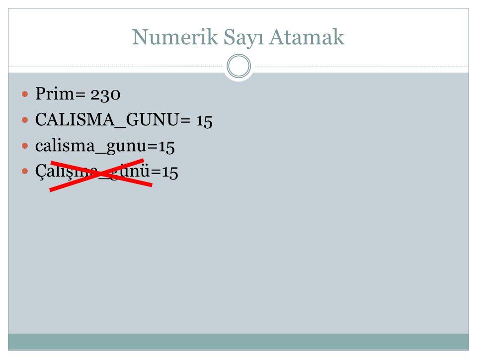 Numerik Sayı Atamak Prim= 230 CALISMA_GUNU= 15 calisma_gunu=15 Çalışma_günü=15