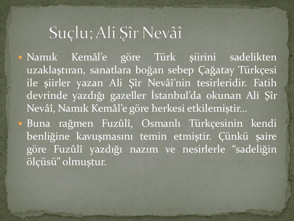 Namık Kemâl'e göre Türk şiirini sadelikten uzaklaştıran, sanatlara boğan sebep Çağatay Türkçesi ile şiirler yazan Ali Şîr Nevâî'nin tesirleridir. Fati