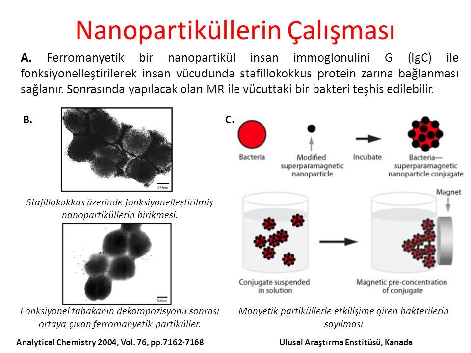 Nanopartiküllerin Çalışması A.