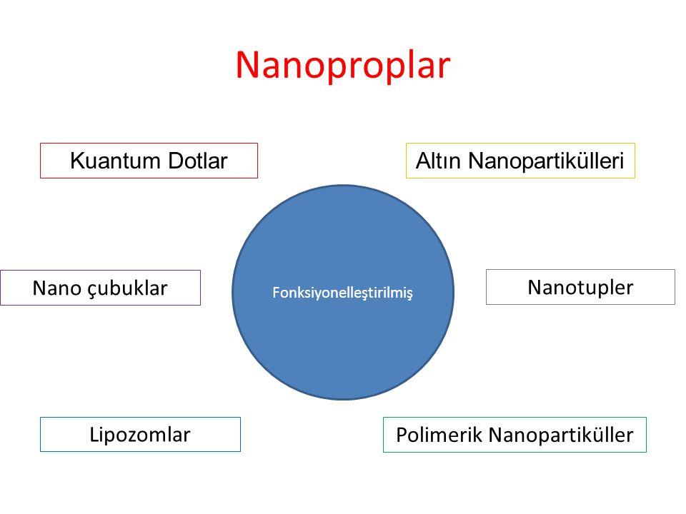 Nanoproplar Kuantum DotlarAltın Nanopartikülleri Lipozomlar Polimerik Nanopartiküller Fonksiyonelleştirilmiş Nanotupler Nano çubuklar