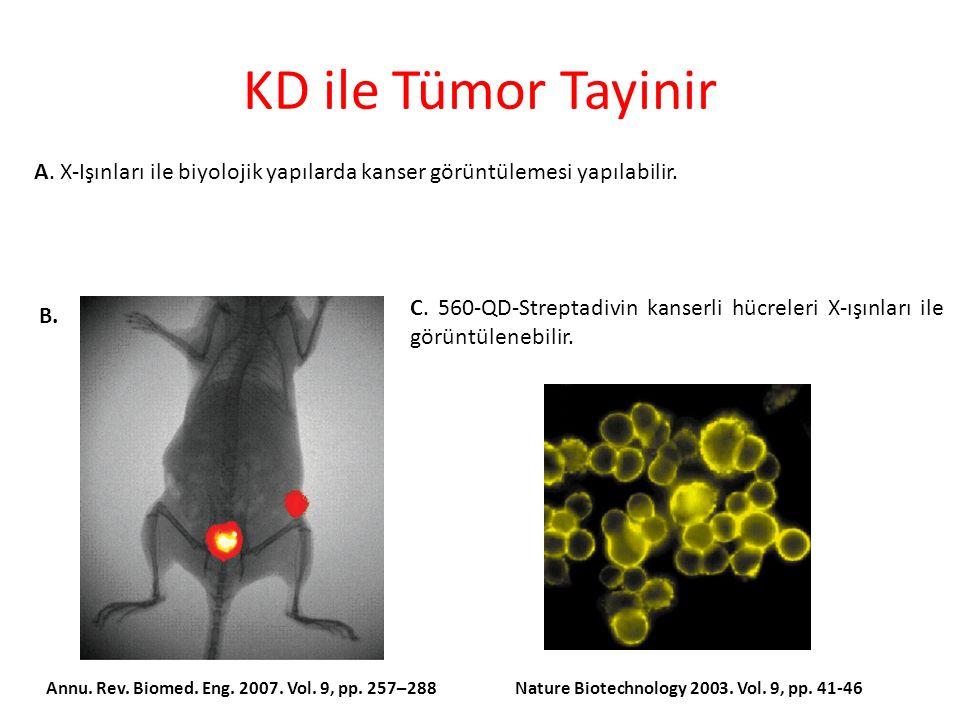 KD ile Tümor Tayinir A.X-Işınları ile biyolojik yapılarda kanser görüntülemesi yapılabilir.