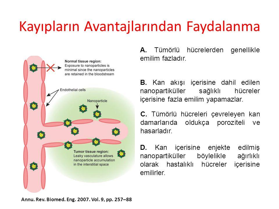 Polimer Nanopartiküller A.