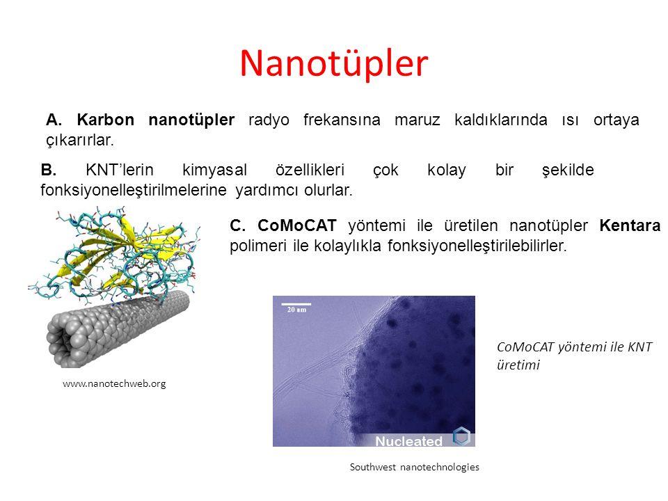 Isı Salınım Testleri Nanotüp süspansiyonu Hamamatsu Nanotechnology Radyo dalgaları Cancer 2007;Vol.110, pp.