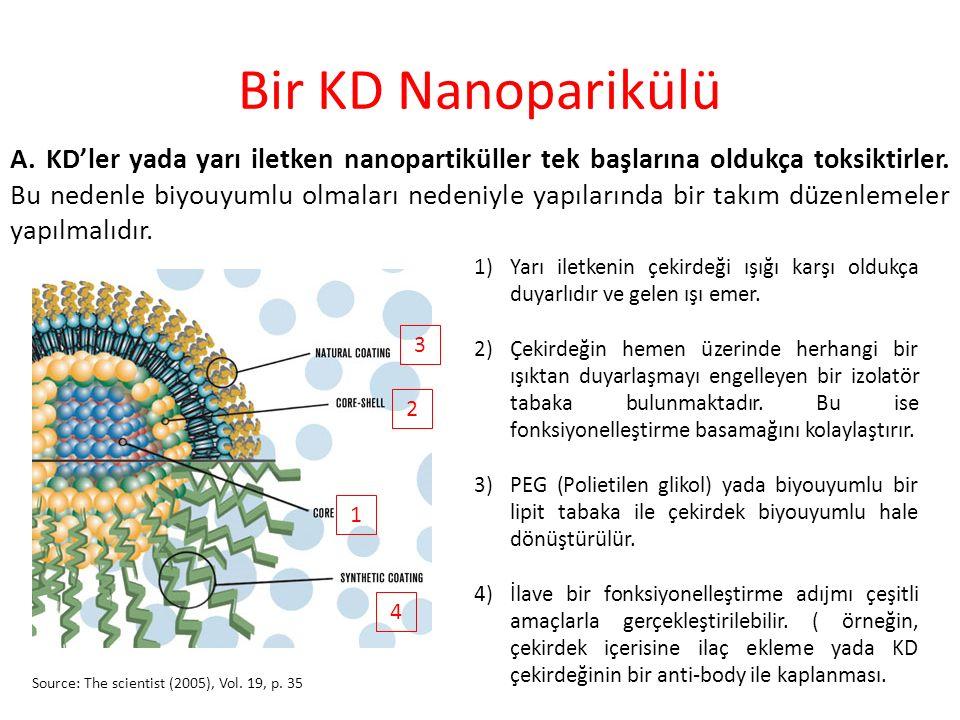 Hücreler arası görüntüleme için KD kullanımı Ligand kaplı KDNP KD'nin serbest bırakılması Emilim Dekompozisyon Etiketleme Nano Letters 2008., Vol.