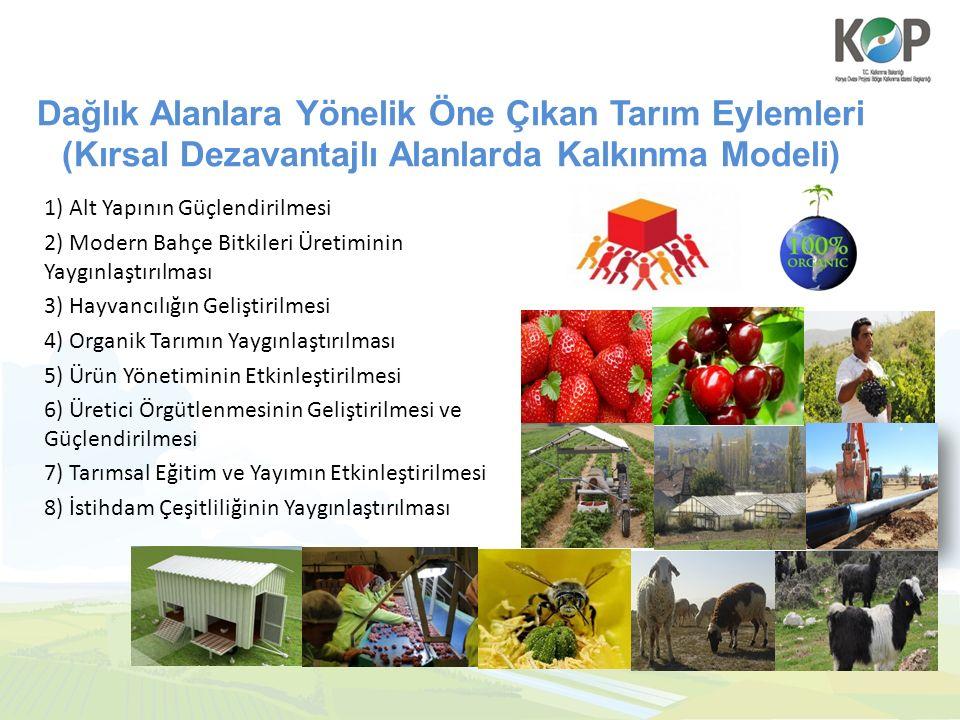 Dağlık Alanlara Yönelik Öne Çıkan Tarım Eylemleri (Kırsal Dezavantajlı Alanlarda Kalkınma Modeli) 1) Alt Yapının Güçlendirilmesi 2) Modern Bahçe Bitkileri Üretiminin Yaygınlaştırılması 3) Hayvancılığın Geliştirilmesi 4) Organik Tarımın Yaygınlaştırılması 5) Ürün Yönetiminin Etkinleştirilmesi 6) Üretici Örgütlenmesinin Geliştirilmesi ve Güçlendirilmesi 7) Tarımsal Eğitim ve Yayımın Etkinleştirilmesi 8) İstihdam Çeşitliliğinin Yaygınlaştırılması