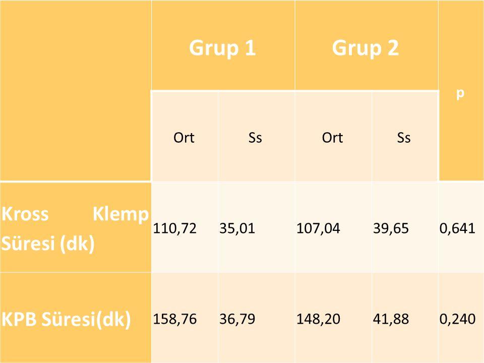 13.10.14 Grup 1Grup 2 p OrtSsOrtSs Kross Klemp Süresi (dk) 110,7235,01107,0439,650,641 KPB Süresi(dk) 158,7636,79148,2041,880,240
