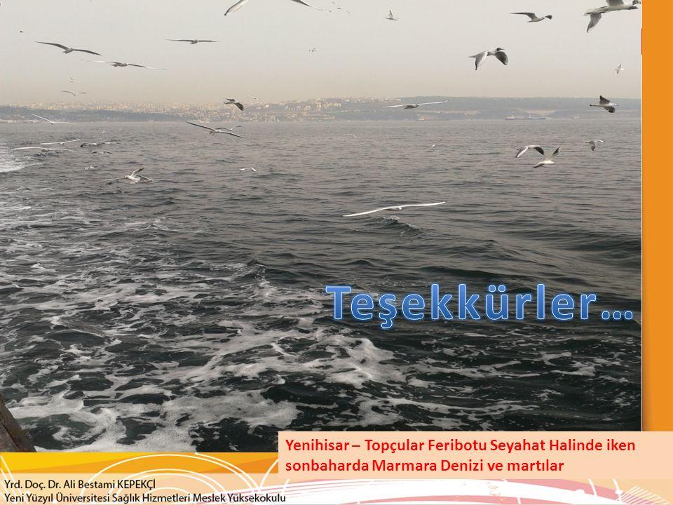 Yenihisar – Topçular Feribotu Seyahat Halinde iken sonbaharda Marmara Denizi ve martılar
