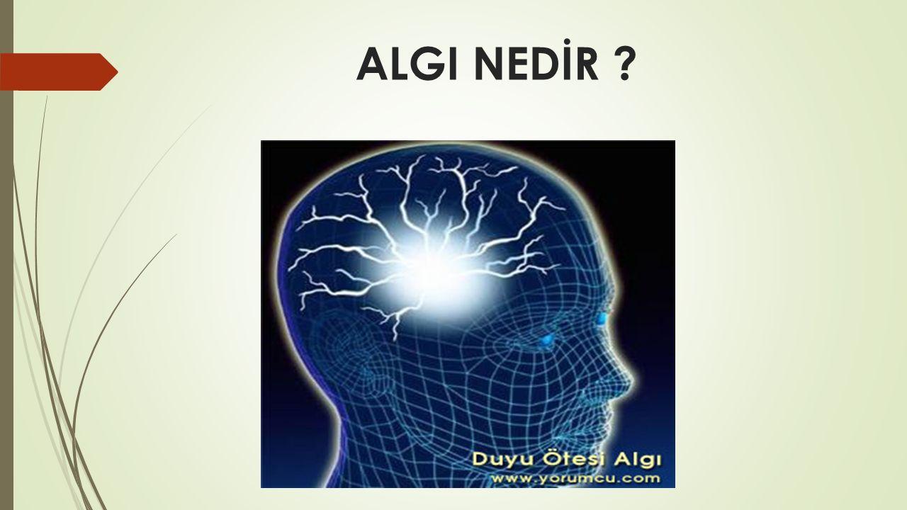 SONUÇ  Çevremizden edindiğimiz çeşitli bilgileri duyularımız ile algılarız.