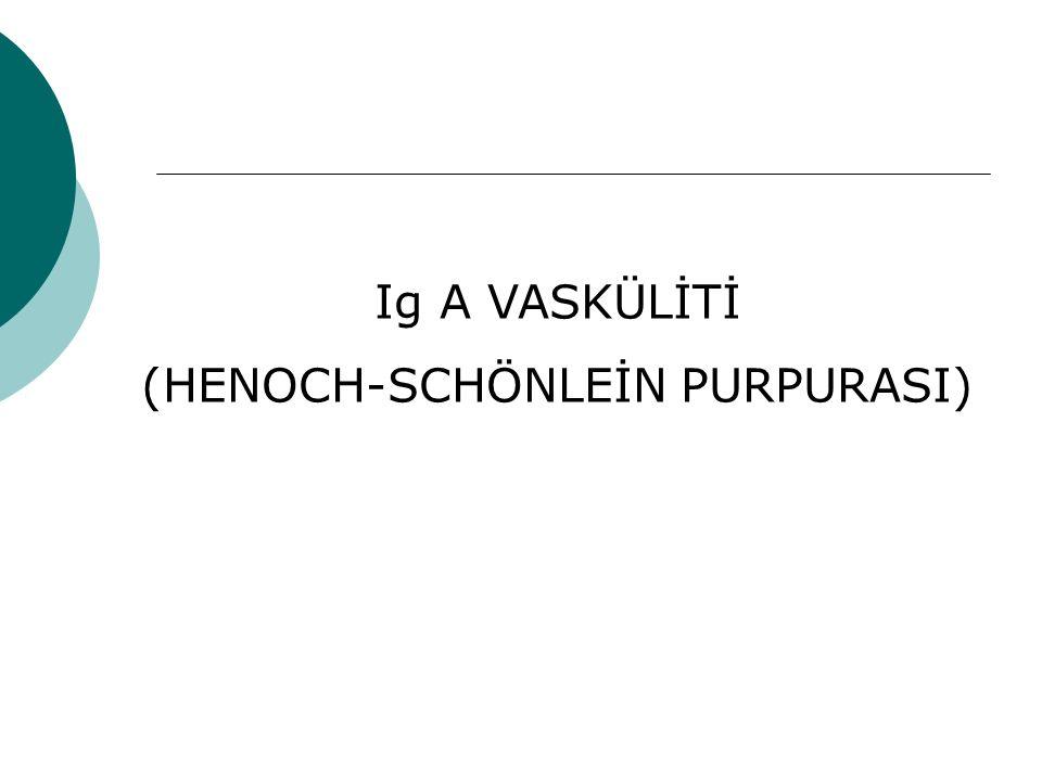Ig A VASKÜLİTİ (HENOCH-SCHÖNLEİN PURPURASI)