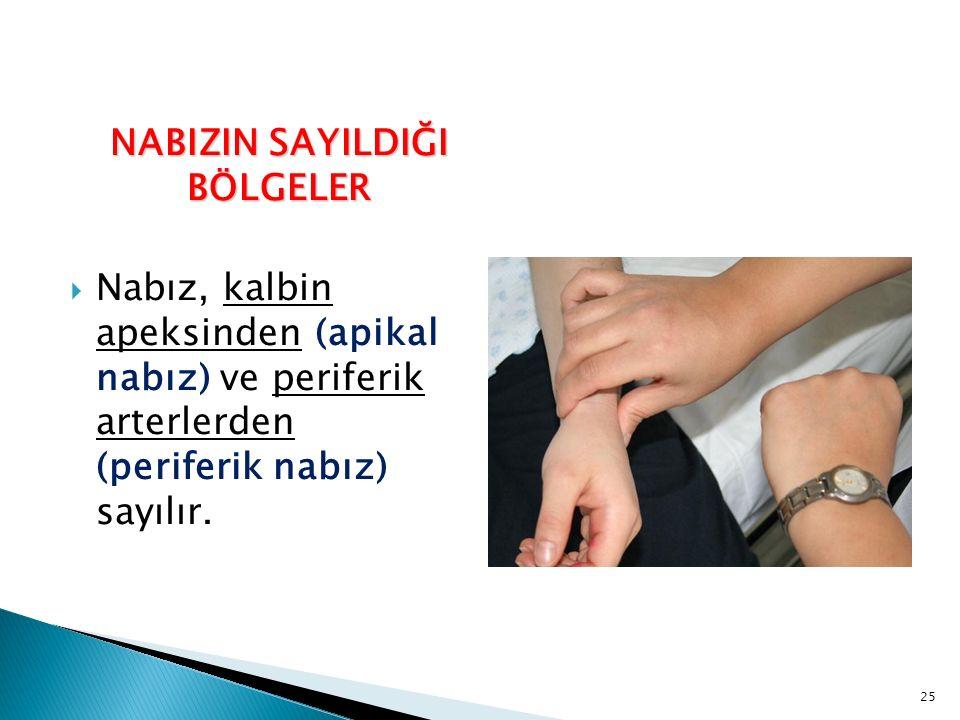 NABIZIN SAYILDIĞI BÖLGELER  Nabız, kalbin apeksinden (apikal nabız) ve periferik arterlerden (periferik nabız) sayılır. 25