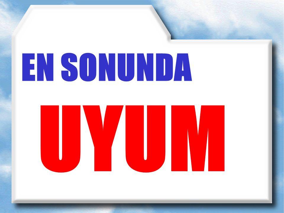 EN SONUNDA UYUM