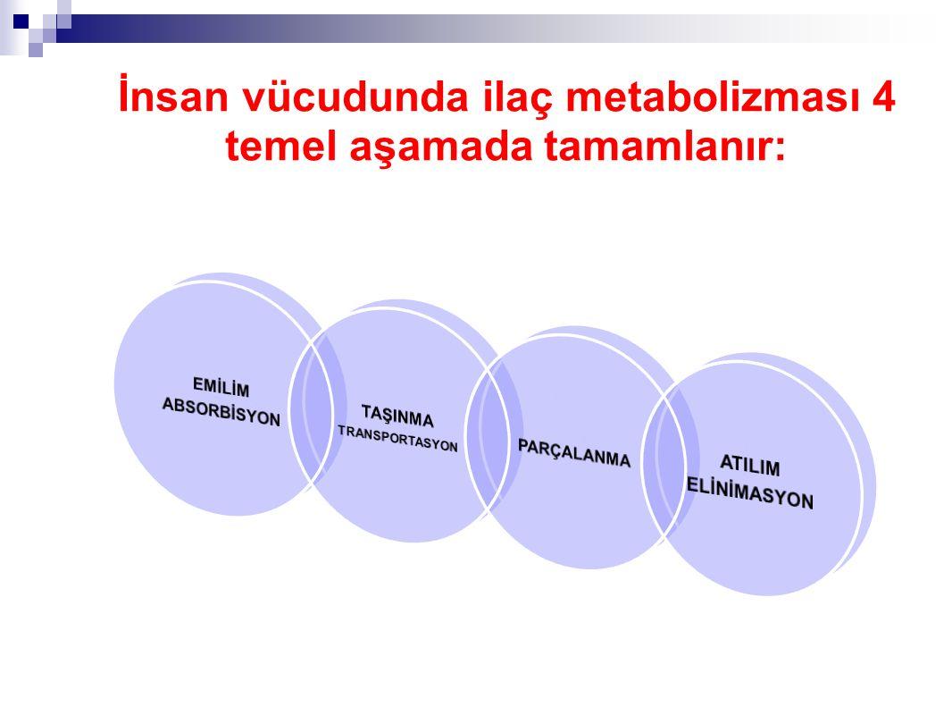 İnsan vücudunda ilaç metabolizması 4 temel aşamada tamamlanır: