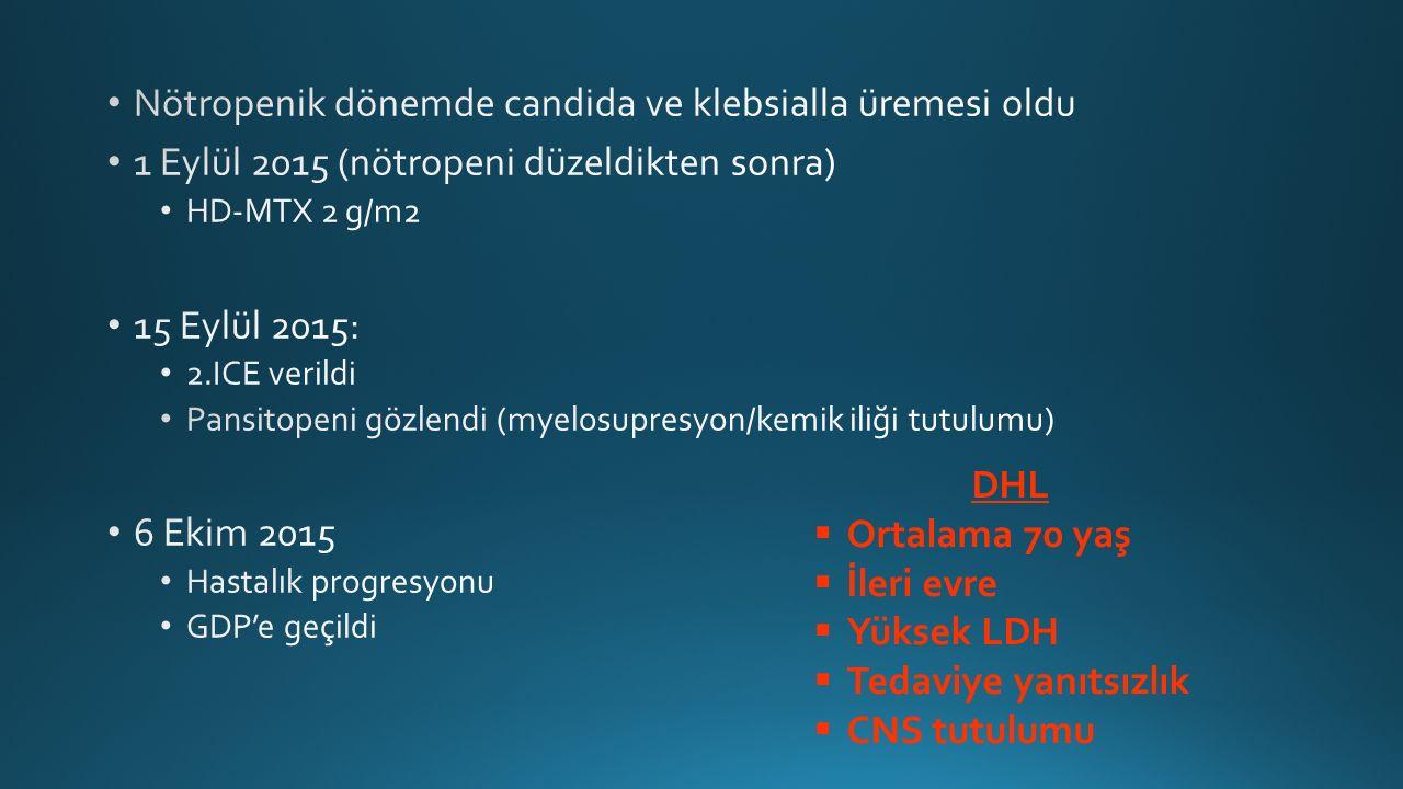 DHL  Ortalama 70 yaş  İleri evre  Yüksek LDH  Tedaviye yanıtsızlık  CNS tutulumu
