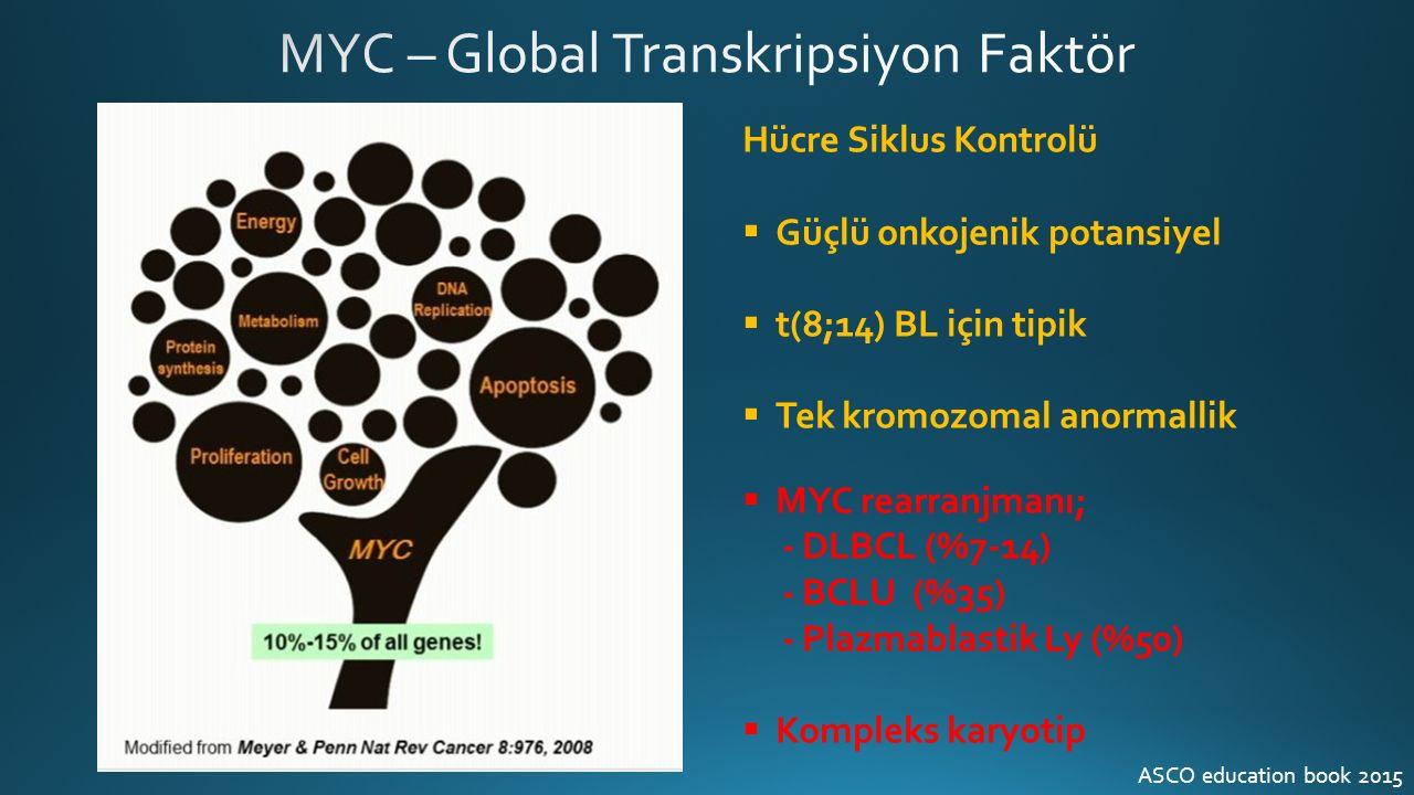 Hücre Siklus Kontrolü  Güçlü onkojenik potansiyel  t(8;14) BL için tipik  Tek kromozomal anormallik  MYC rearranjmanı; - DLBCL (%7-14) - BCLU (%35) - Plazmablastik Ly (%50)  Kompleks karyotip ASCO education book 2015