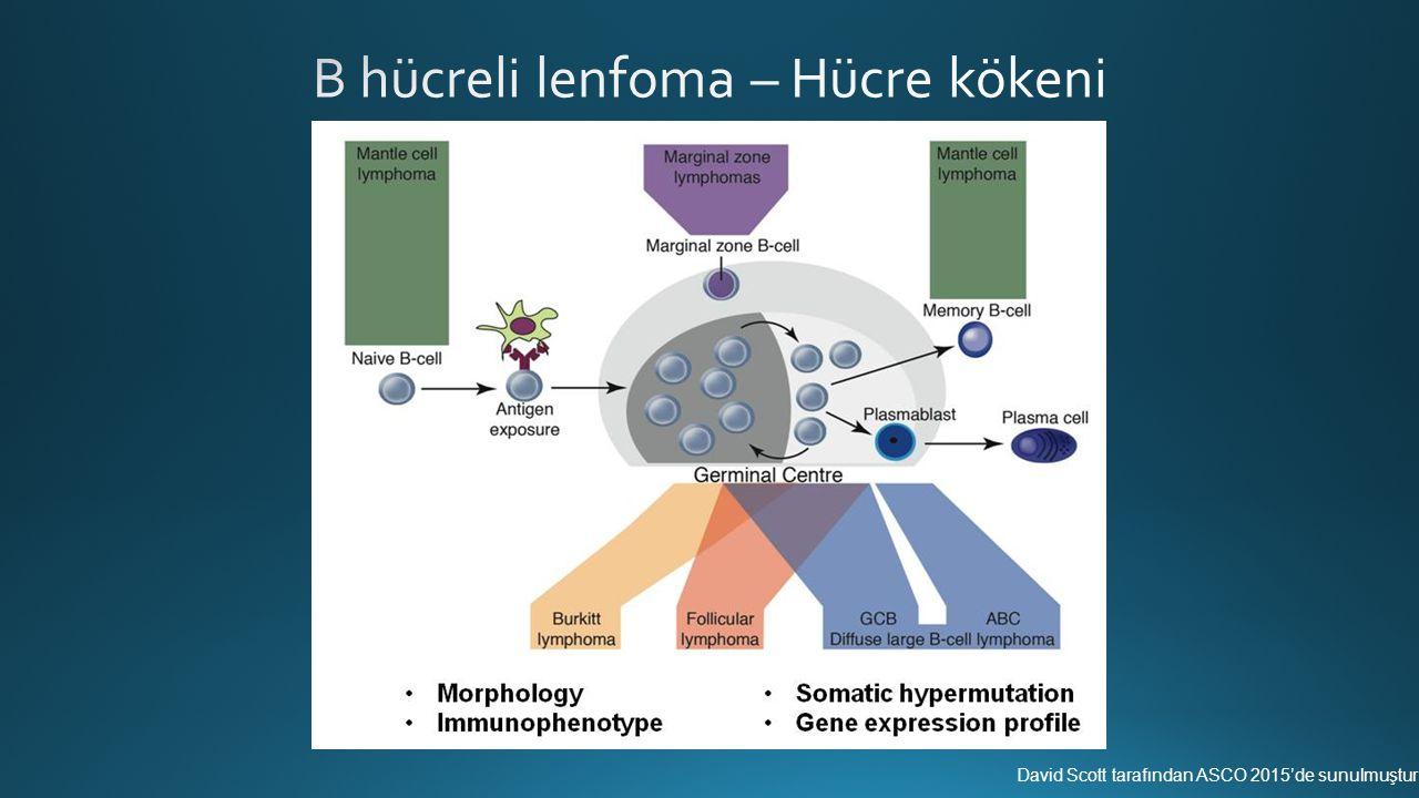 Adından da anlaşılacağı gibi, DHL'nn tanınması için kimi tetkikler gerekmektedir Klasik sitogenetik çalışmalar Sitogenetik Fluoresan in situ hibridizasyon (FISH) çalışmaları
