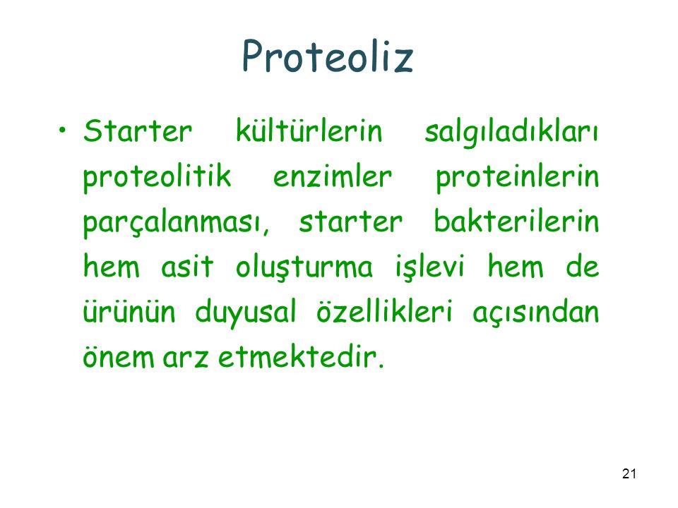 21 Proteoliz Starter kültürlerin salgıladıkları proteolitik enzimler proteinlerin parçalanması, starter bakterilerin hem asit oluşturma işlevi hem de