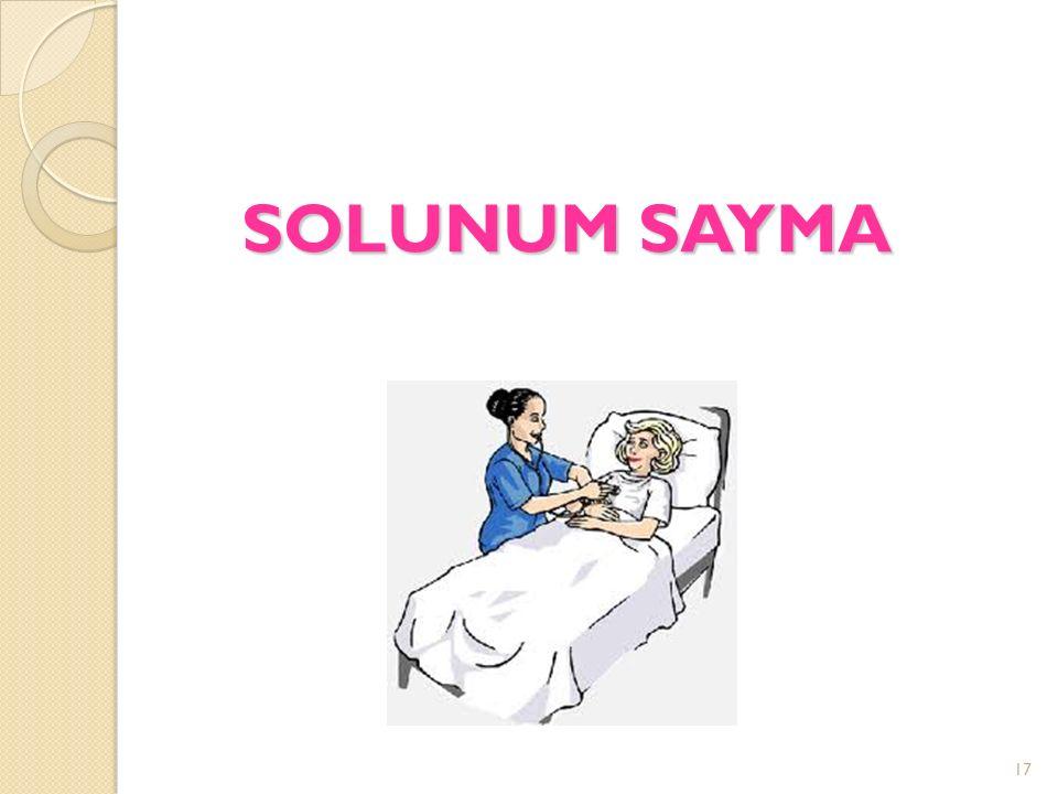 SOLUNUM SAYMA 17